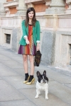 Missoni and pooch